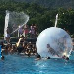 pool fun (162220735)