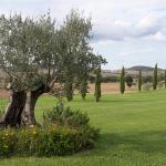 Photo of Agriturismo Lunadoro