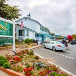 The Arbor Inn - Monterey
