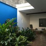 La Casa Azul Foto
