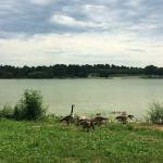 Photo of Holmes Park & Lake