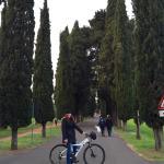 Top Bike Rental & Tours Foto