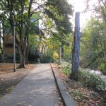 Park in October.