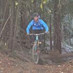 Foto de Big Swingin' Cycles - California Mountain Bike Tours
