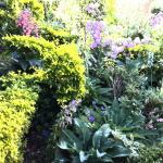 Such beautiful gardens.