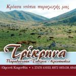 Bilde fra Trikρina Traditional Tavern - Kreopoleio