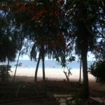 Photo of Nungwi Inn