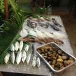 Fishes and Sea Food…..
