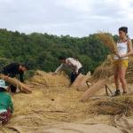 Hill Tribe works : Hill Tribe Day Trek with The Golden Triangle Tous Company