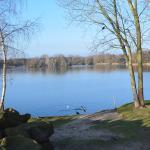 Photo de Center Parcs De Huttenheugte