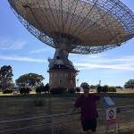 The dish at Parkes. Worth a look.