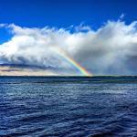 Foto de Menehune Shores Oceanfront Maui Condos