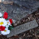 Terhune Memorial Park