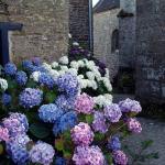 Le  village fleuri