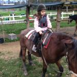 Photo of Lucca Horseriding