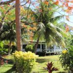 The Beachouse Accommodation option