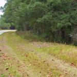 Mile marker 797