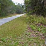 Photo de Withlacoochee Trail State Park