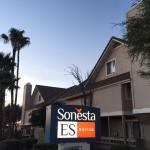 Sonesta Sign