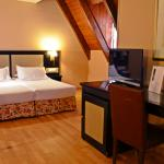 Photo de Hotel Spa Acevi Val d'Aran