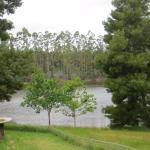Jenny's Lake照片