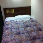 Hotel New Plaza Kurume