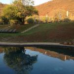 Landscape - Ivory Tree Game Lodge Photo