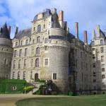 Castelli della Loira - Château de Brissac-Quincé n. 3