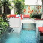 Ginger Swimming Pool