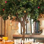 The Garden Restaurant at Christmas