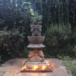 Photo de SWAN Yoga Retreat
