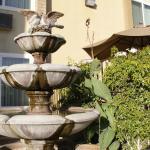BEST WESTERN PLUS South Bay Hotel Foto