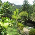 Photo de Blue Ginger Resorts