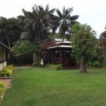 Quiet, established gardens, a short walk from beach & shops