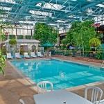 Courtyard Indoor Pool