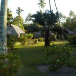 environnement des bungalows