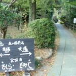 露天風呂への道