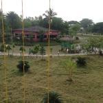 Фотография 1549370