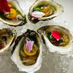 Local Rhode Island Oysters