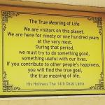 The True Meaning of Life