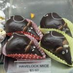 Havelock Mice