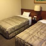 Hotel Route-Inn Kogaekimae