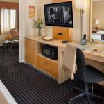 Millwood Junior Suite