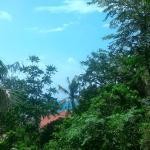 Прекрасный вид с балкона :)