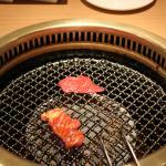 Photo of Charcoal Barbecue Heijoen
