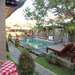 pretty balinese courtyard and pool