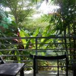 balcon sur jardin