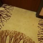 Photo de BEST WESTERN PLUS Texoma Hotel & Suites