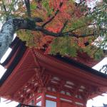 Photo de Maikai Ohana Tours