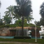 Landscape - Melia Nassau Beach - All Inclusive Photo